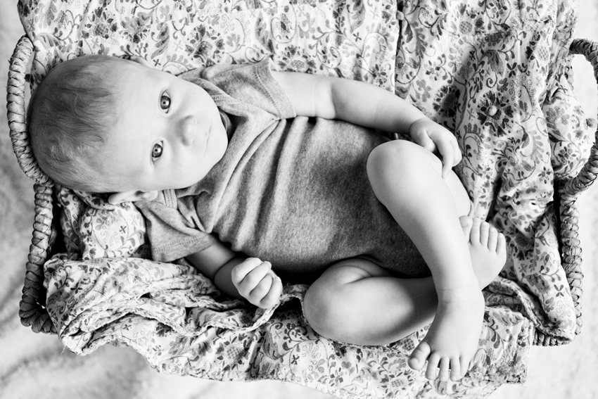 Denver, CO baby photographer Marni Mattner's portrait of Logan