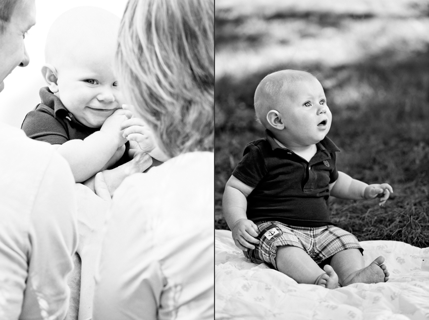 Logan at 6 months  Marni Mattner Photography