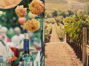 Vineyard and Wine Bottle At Wedding Near Sonoma and Napa, California © Marni Mattner Photography