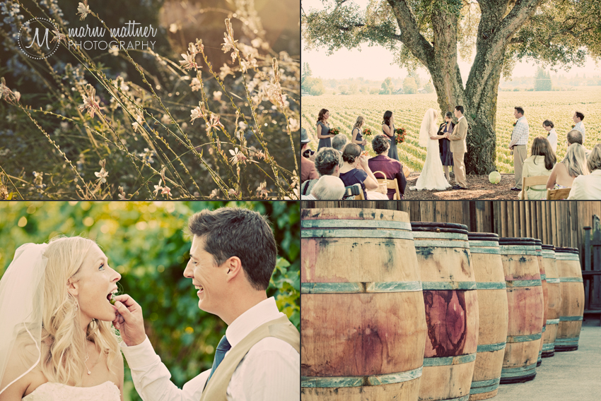 Wedding Near Napa and Sonoma in Healdsburg, CA © Marni Mattner Photography