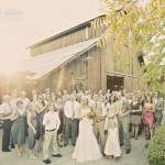 Wedding Guests At Sunset By The Healdsburg Country Gardens Barn  Marni Mattner Photography
