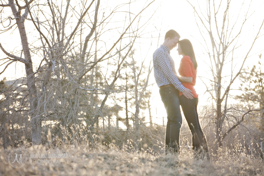 Engagement Photos in Confluence Park, Denver  Marni Mattner Photography