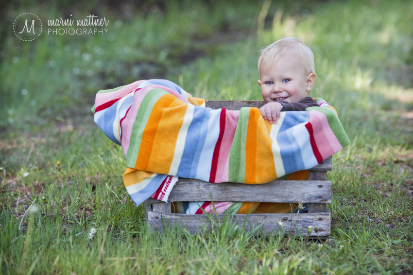 Logan's 1-Year Portraits, In Colorado In A Vintage Crate  Marni Mattner Photography