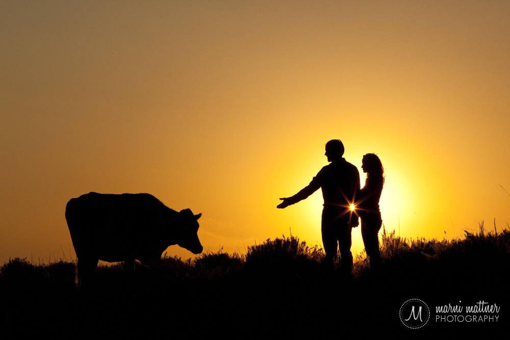 Marni Mattner Photography's It's AgriCulture Professional Category First Prize Award Winner