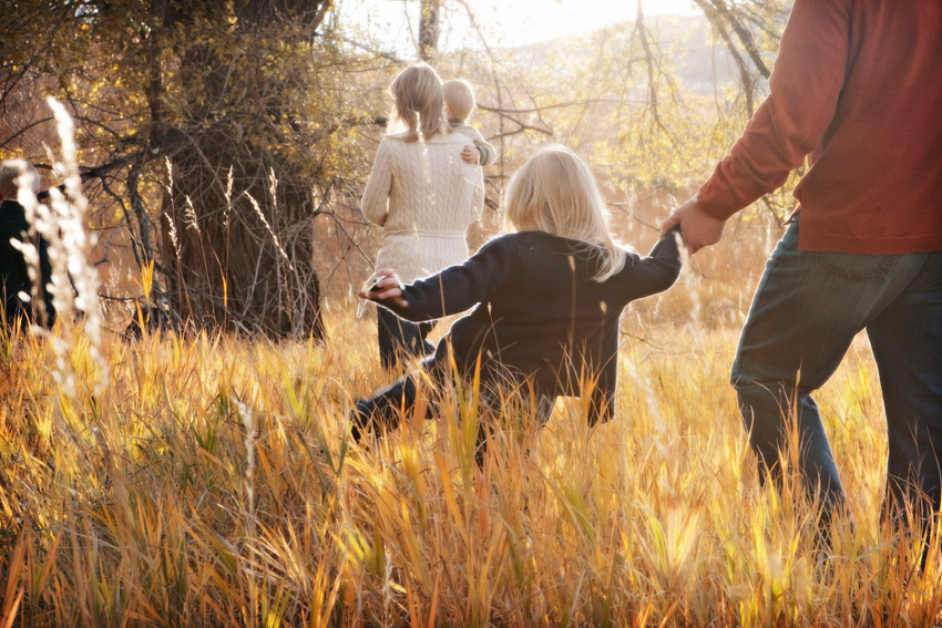 Greves Family Portraits Holding Hands © Marni Mattner Photography