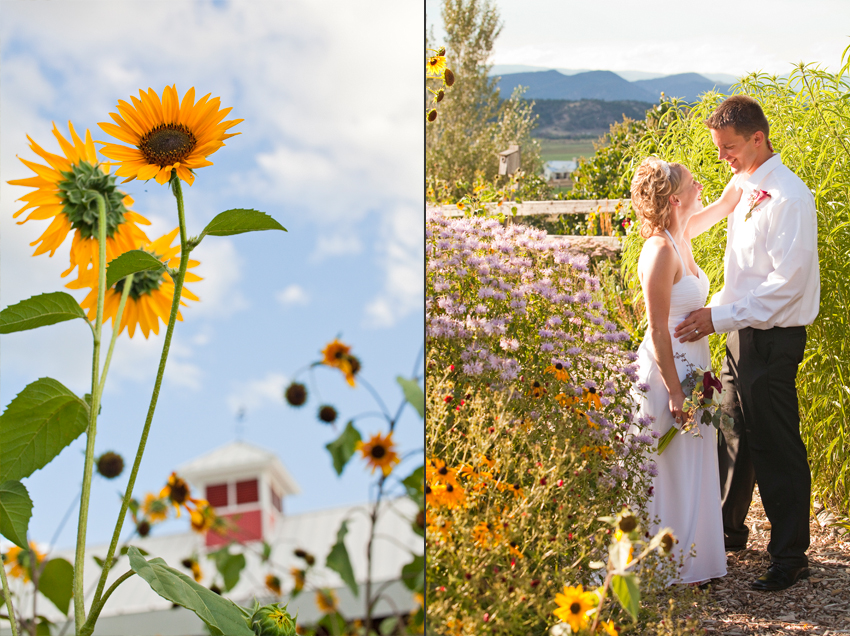 Flying Dog Ranch Garden Wedding Photos of the Bride & Groom © Marni Mattner Photography