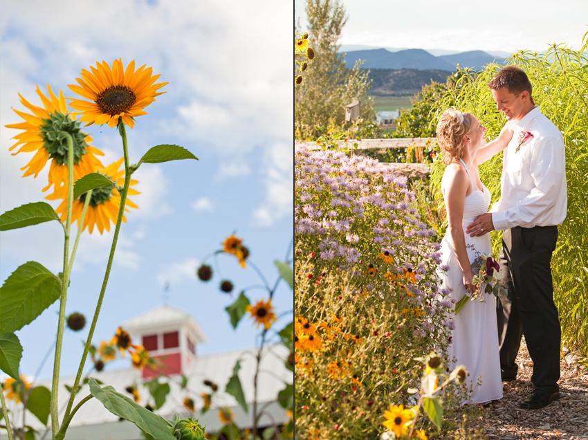 Flying Dog Ranch Garden Wedding Photos of the Bride & Groom © Marni Mattner Photography