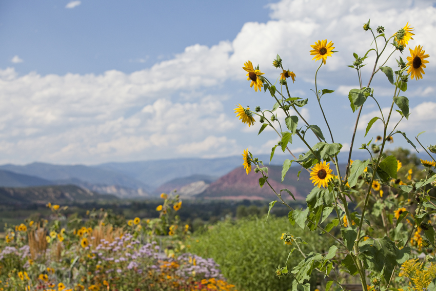 View of Mountains in the Valley Between Glenwood Springs and Aspen, CO © Marni Mattner Photography